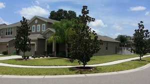 Riverview Home, FL Real Estate Listing